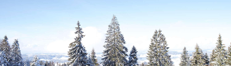 Wetter Oberreute Allgäu